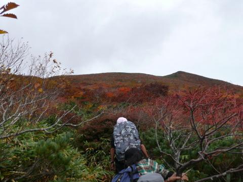 右側東栗駒山-1.JPG