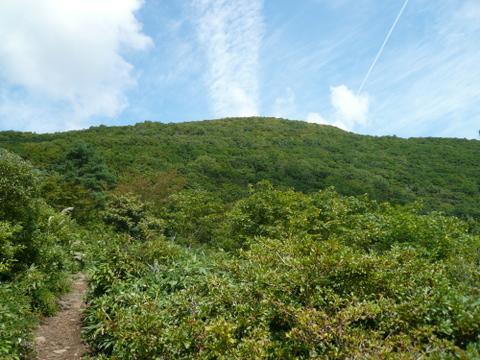見返り平から見た山頂-1.JPG